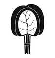 branch of spinach leaves icon simple style vector image