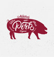 pig silhouette and hand written lettering words vector image vector image