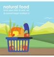 Shopping basket full of healthy organic vector image