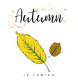 autumn is coming autumn leaves hand drawn vector image vector image