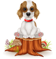 Cartoon dog sitting on tree stump vector image