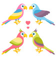 couples of cartoon colorful parrots in love vector image vector image