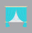 drapery window isolated object vector image vector image