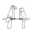 exotic birds cartoons in black and white vector image vector image