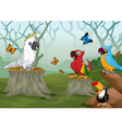 funny bird with deep forest landscape background vector image vector image