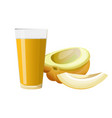 melon and glass of juice vector image