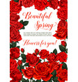 spring flowers greeting card vector image vector image