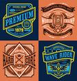 Vintage surfing t-shirt graphic set vector image