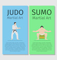 asian martial arts judo and sumo vector image vector image