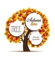 autumn tree vector image vector image