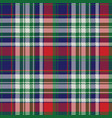 celt pattern check fabric texture vector image vector image