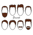 male brunet hair and face fungus styles types vector image