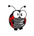 Smiling happy little ladybug or ladybird vector image