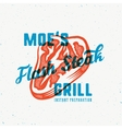 The Flash Instant Steak Abstract Vintage vector image vector image