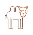 african camel isolated icon vector image