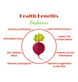 beetroot benefits - organic vegetarian nutrition vector image vector image