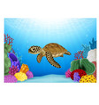 Cartoon of Turtle with beautiful underwater vector image vector image