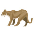 lioness icon cartoon style vector image vector image