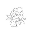 one single line drawing beauty rose flower vector image vector image