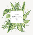 template card of green tropical leaves vector image