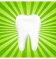Tooth With Beams vector image vector image