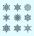 winter set white snowflakes isolated vector image vector image