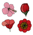 Traditional Flowers Set vector image
