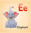 animals alphabet e is for elephants vector image vector image