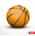 Basketball ball isolated on a white background vector image