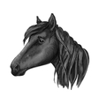 Black riding horse sketch for equestrian design vector image vector image