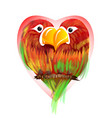 enamored parrots vector image