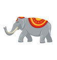 indian elephant tusks and clothing with ornament vector image