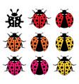 ladybirds flat symbols vector image vector image