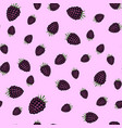 seamless pattern from blackberry vector image vector image