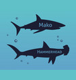 set of silhouettes sharks isolated on se vector image vector image