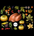 set thanksgiving decor and food such as turkey vector image