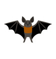 bat vampire bat scary vector image