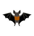 bat vampire scary vector image