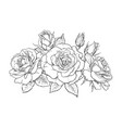 bouquet roses blooming flowers buds leaves vector image