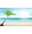 Caribbean sea and coconut palm vector image