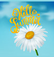 chamomile on a blue sky background vector image vector image