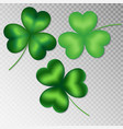 clover on a transparent background vector image vector image