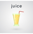 Orange juice in a glass vector image vector image