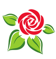 rose flower symbol tattoo vector image vector image