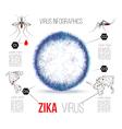Virus zika infographics vector image