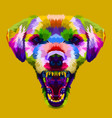 angry colorful dog head on pop art style vector image vector image