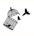 caged birds prison vector image vector image