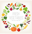 fresh colorful vegetables arranged in circle vector image
