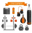 gym equipment Flat style vector image vector image