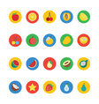 Fruit and Vegetable Icons 1 vector image